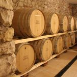 VISITE GUIDATE IN CANTINA